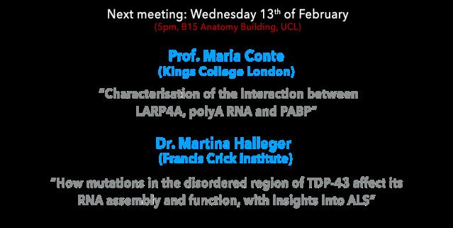 13th feb 2019 LRC next meeting